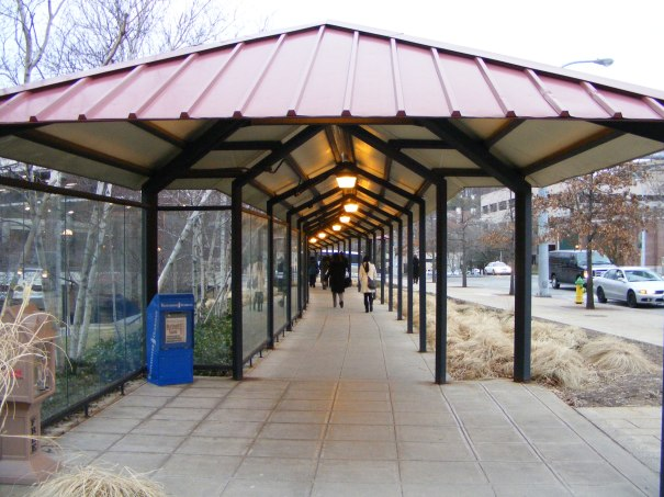 tunneled walkway 1